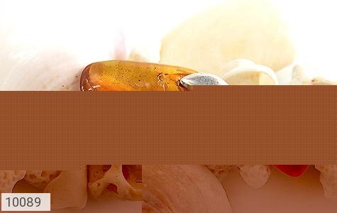 مدال کهربا حشره ای بولونی لهستان عسلی خوش رنگ - تصویر 4