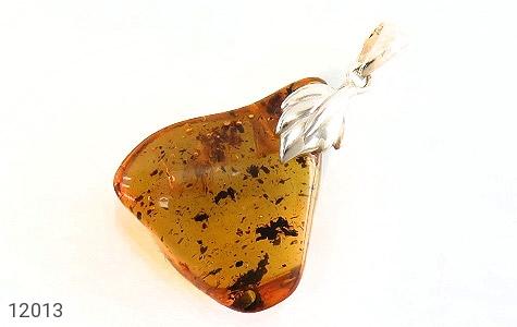 مدال کهربا بولونی لهستان حشره ای - عکس 1