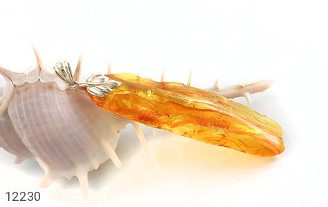 مدال کهربا حشره ای بولونی لهستان بلند بسیار خوش رنگ - عکس 5