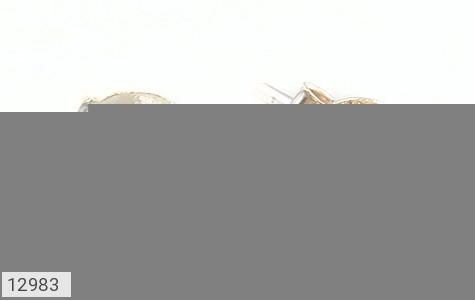 گوشواره نقره گل گوش بنفش زنانه - عکس 1