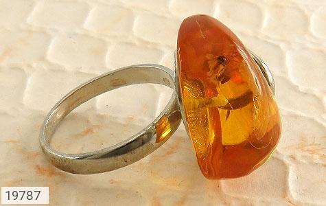 انگشتر کهربا حشره ای بولونی لهستان شفاف و زیبا زنانه - عکس 3