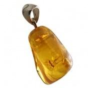 مدال کهربا حشره ای شفاف و خاص