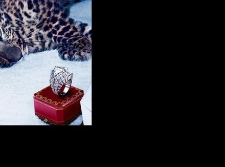 جواهرات بی نظیر و زیبای برند کارتیه (Cartier)
