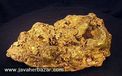 کشت طلا با استفاده از گیاهان