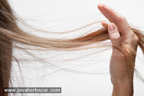 علت ریزش مو در فصل پاییز چیست؟