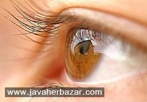 تشخیص آلزایمر از روی چشم