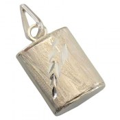 مدال نقره جادعایی بازشو