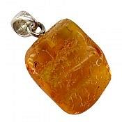 مدال نقره کهربا بولونی لهستان حشره ای عسلی رنگ