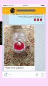 تصویر خرید از جواهربازار - شماره 216