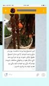 تصویر خرید از جواهربازار - شماره 220