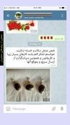 تصویر خرید از جواهربازار - شماره 363