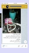 تصویر خرید از جواهربازار - شماره 79