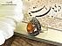 انگشتر نقره عقیق یمن شرف الشمس طرح گیلدا زنانه - 22454 - 1