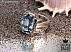 انگشتر نقره توپاز سوئیس شاهانه مردانه - 31111 - 1