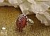 انگشتر نقره عقیق یمن حکاکی فاطمه الزهرا مردانه دست ساز - 34659 - 1